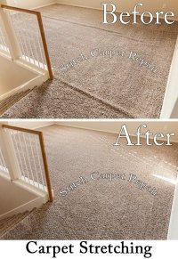 Carpet stretching between the hallway and living room in ...
