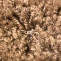 North Park Rug & Carpet