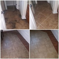 Extreme Carpet Care & Restoration
