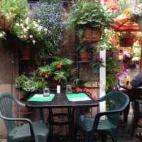 El Patio Mexican Restaurant - 19 Photos & 22 Reviews ...