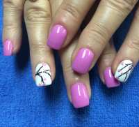 Photos for Venus Nails - Yelp