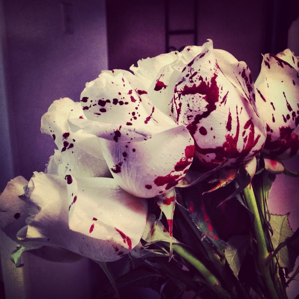 Blood Splatter White Roses For Valentines Day For My Wife