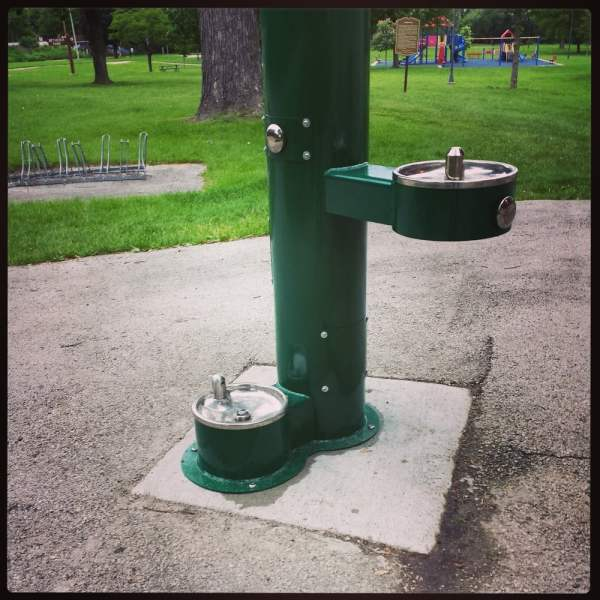 Drinking Fountain Dogs And Humans With Traditional