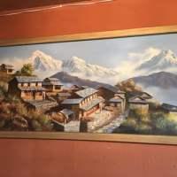 Himalayan Kitchen - 413 Photos & 584 Reviews - Indian ...