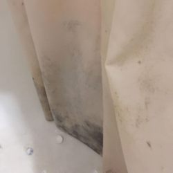Photo Of Red Carpet Inn Tonawanda Ny United States Extremely Moldy Shower