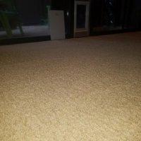 Ardent Carpet Restore - 11 Photos & 14 Reviews - Carpet ...