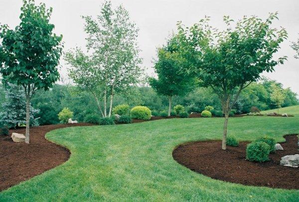 roy lawn service & landscape