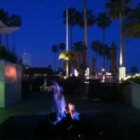 Jonathan Beach Club - 75 Photos & 52 Reviews - Lounges ...