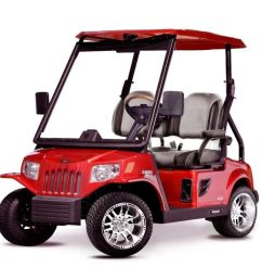 27 photos for wildar golf carts and trailers [ 1000 x 892 Pixel ]