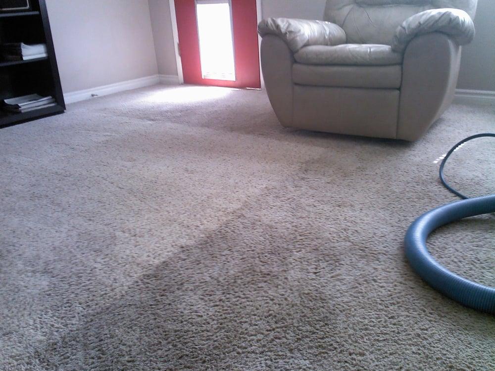 Photos for Quality Carpet Care