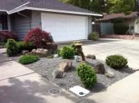 Japanese style mini rock garden. Gravel base, slow growing
