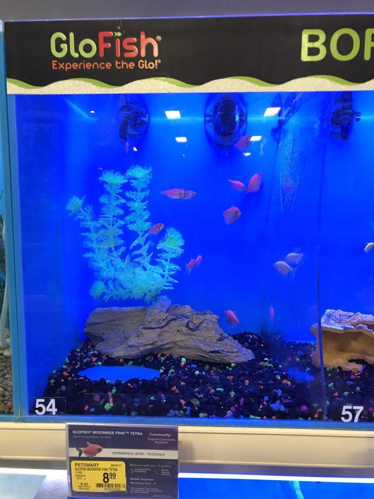fish yelp