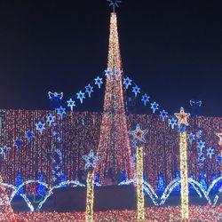 christmas lights miami # 38