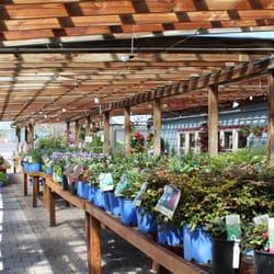 evergreen landscaping & garden