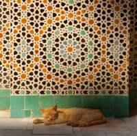 Moorish Tile Wallpaper | Tile Design Ideas