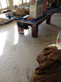 Photos for Extreme Carpet Care - Yelp