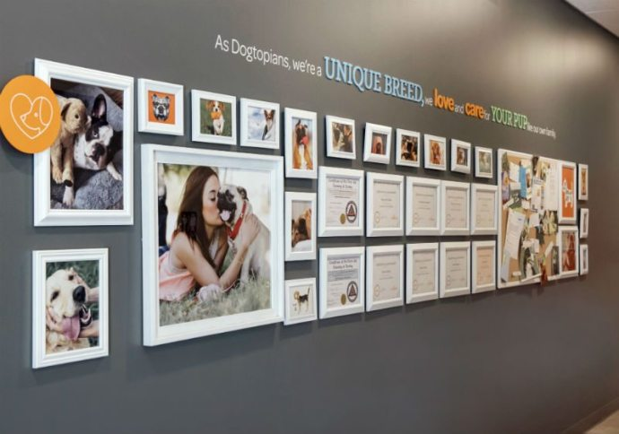 Certificates and dog pictures hanging on the wall at Dogtopia of Oakbrook Terrace.
