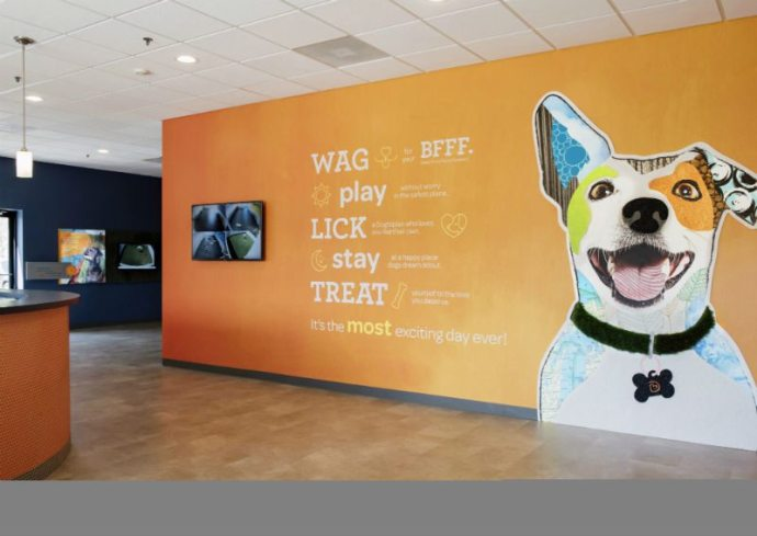 Welcome wall with the logo at Dogtopia of Oakbrook Terrace.
