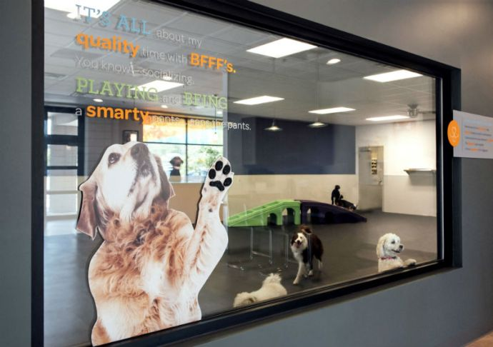 'View through the glass into the dogs'' playroom at Dogtopia of Dallas – Inwood.'