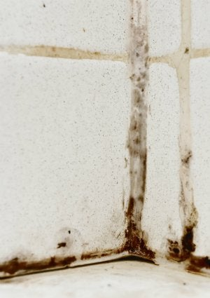 How to Get Rid of Mildew Smell  Bob Vila