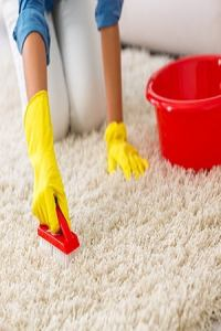How to Get Mold Out of the Carpet - Bob Vila