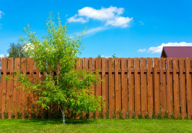 Best Stain Brand For Fence