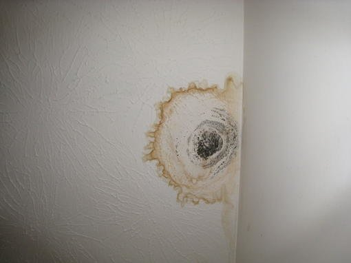 how to fix a water spot on ceiling