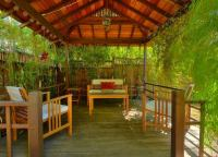 Bamboo for Privacy - Backyard Privacy Ideas - 11 Ways to ...