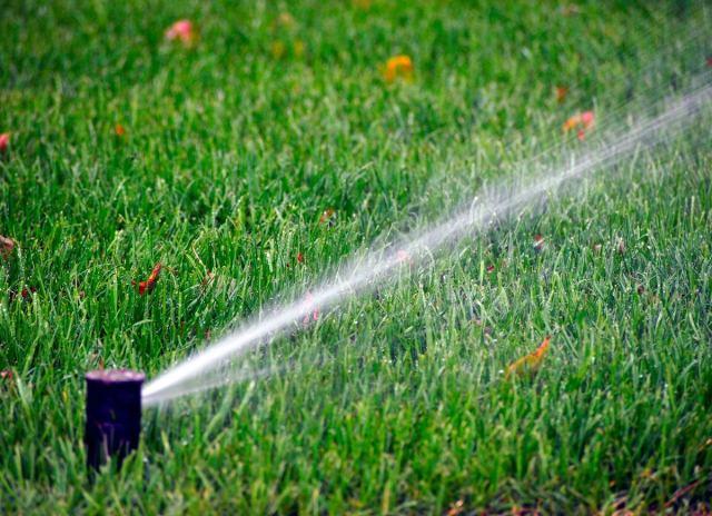 Grass-water