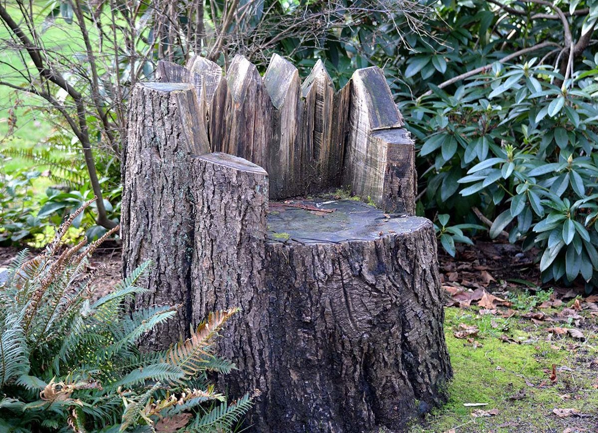 tree stump chairs wedding chair covers devon ideas that will blow you away bob vila