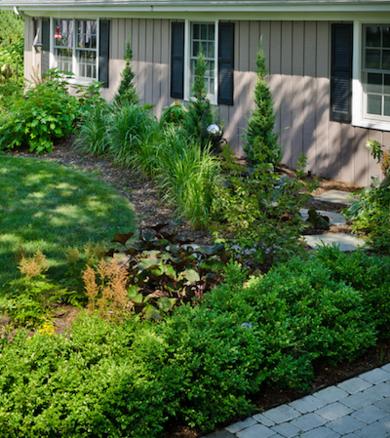 grey exterior - backyard landscaping