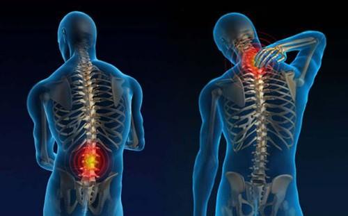 Resultado de imagem para coluna vertebral