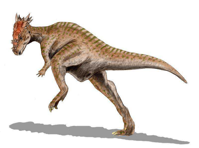 Dracorex_BW