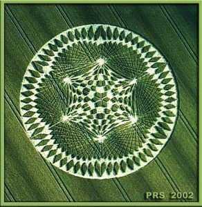 crop-circle-24
