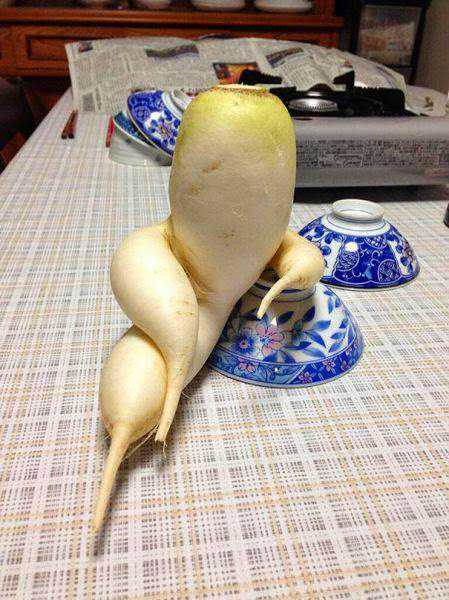 vegetables_that_are_desperately_trying_to_be_something_else_640_06
