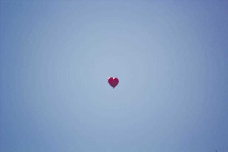 loves in the air_low