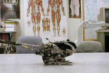 Troody_Robot_Dinosaur_PeterDilworth2