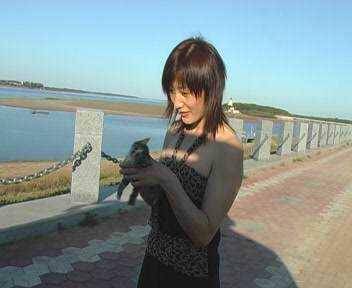 Uma mulher com roupas sensuais surge com um filhotinho de gato