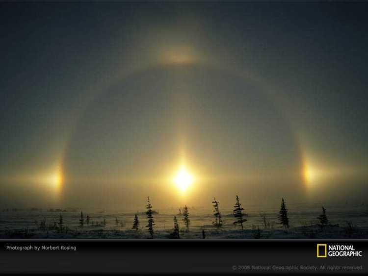 polar-phenomena-rosing-749109-sw