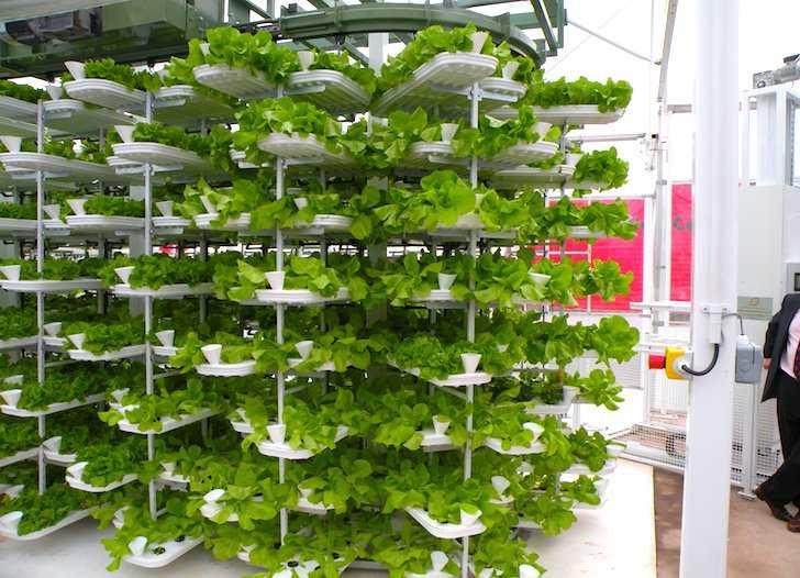 Vertical-Urban-Farming