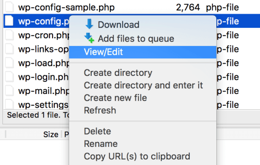 The View/Edit option in FileZilla.