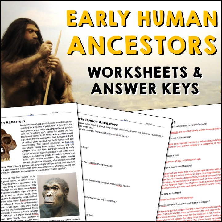 Early Human Ancestors Reading Worksheets And Answer Keys A Page Out Of History