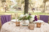 Rustic Chic Champagne and Purple Wedding Inspiration
