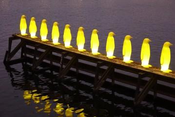 Prague penguins lined up