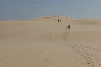 Dune du Pilat people