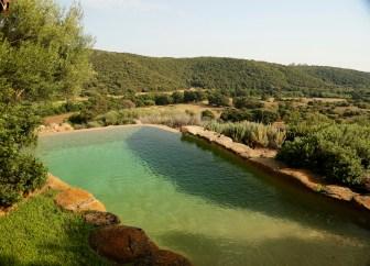 Domaine de Murtoli A Tiria infinity pool