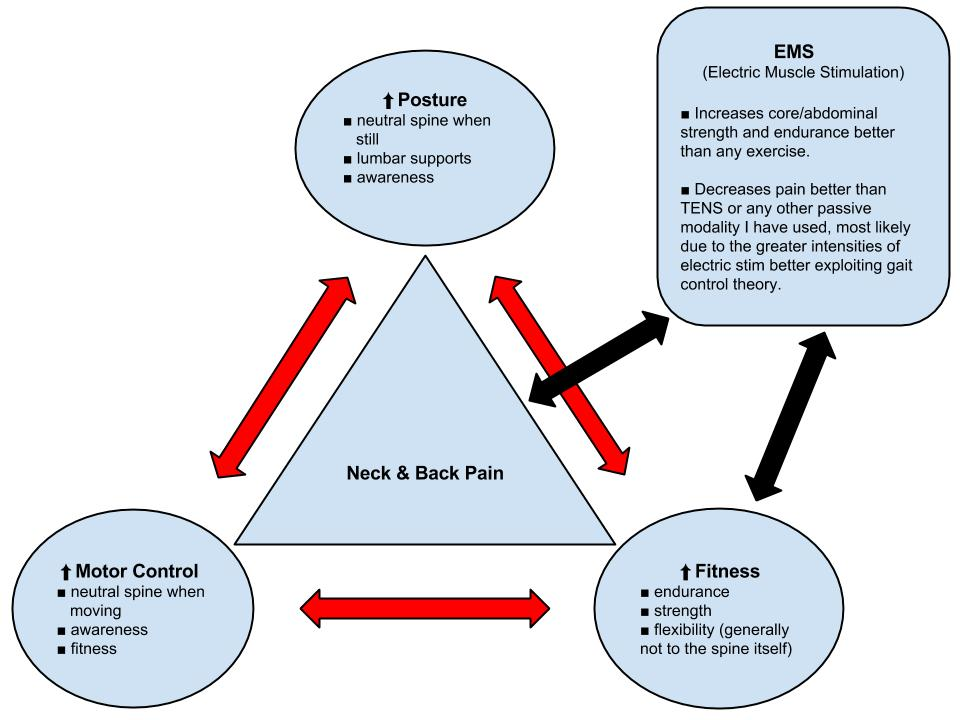 Low Back Pain Absolute Physical Therapy