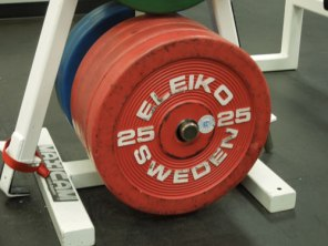 Absolute Physical Therapy - Weights - Phoenix, Arizona