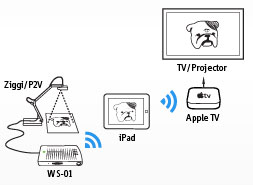 WS-01 Wireless Station for iPad and USB Document Cameras