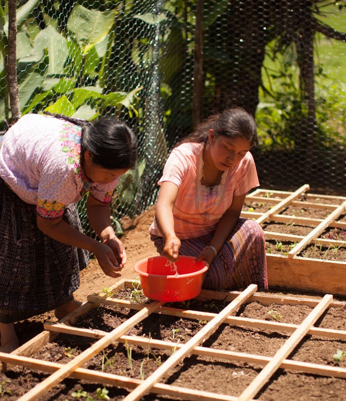 Square Foot Gardening with Cultiva International in Sololá, Guatemala